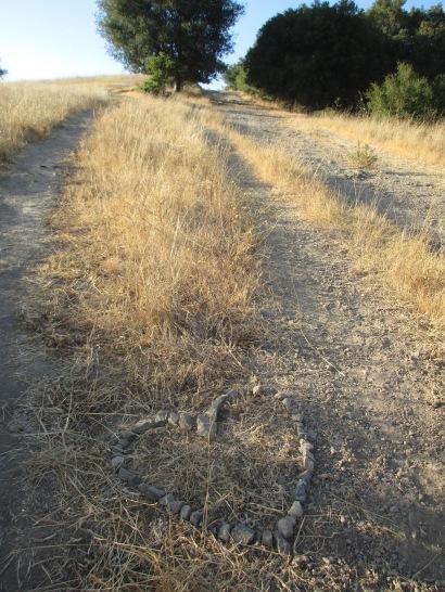 Sorich Ranch